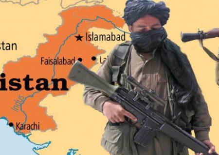 چشمانداز پیشروی تحریک طالبان پاکستان با عطف به پیروزی طالبان افغانستان